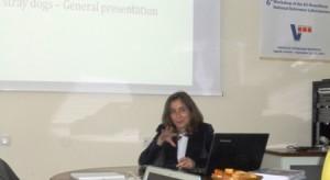 OIE presentation